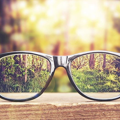 Business Advisory image - Glasses on a bench